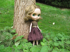 Chocolate Brown Dress