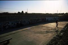 """paradise"" (tunaboat) Tags: film diy angle secret board 28mm wide spot velvia skate f3 50"