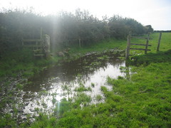 4 Flooded stile
