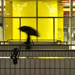 Along the way (edouardv66) Tags: school windows light man motion color rain yellow night umbrella switzerland movement nikon suisse geneva sigma explore genève 2470 nikonsigma d700