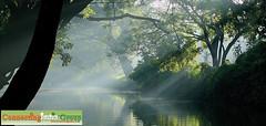 Kerala -true Colors (Connectingindia Group) Tags: alleppey kumarakom bakwaters houseboatskerala