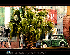 Mural Behind the Palm Tree (Rebel XT Shots / Bobbie) Tags: painting mural palmtree paintshoppro rebelxt photoart