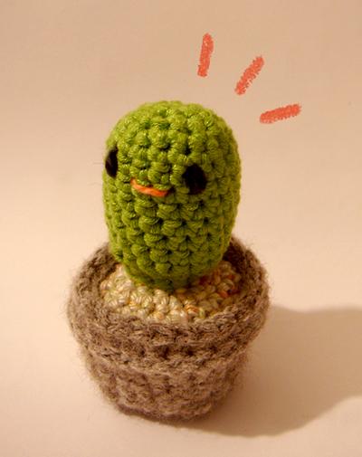 Hello Cactus!!