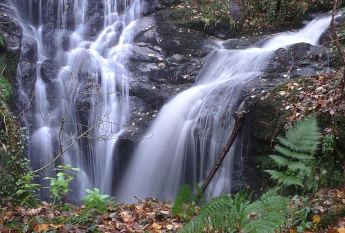 Fairlie Glen Castle Falls17Nov08