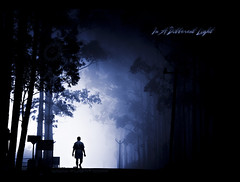 In a different light (Yug_and_her) Tags: life morning trees winter india mist man silhouette fog walking walk candid mysterious layers incredible tamilnadu kodaikanal exploretop20 artlibre topofthefog infinestyle thesecretlifeoftrees pcamonochrome