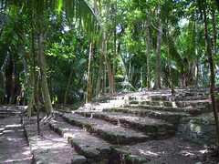 Chochaben Jungle Steps (Butch Osborne) Tags: travel mexico ancient ruins maya culture mayan mayanruins historical traveling antiquity mustsee mayanculture yuccatan westerncarribeancruise2006 mayancity bucketlist