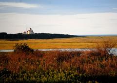 Coast Guard Station across the Marsh (mimicapecod) Tags: capecod marsh coastguardstation mykindofpicturegallery betterthangood