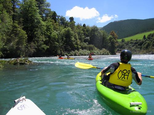 Kayaking Pelorus River