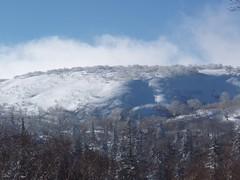 朝里岳のシュプール