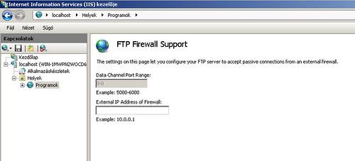 Publikus IP cím megadása