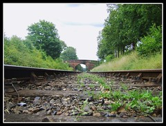 Between The Rails (Jon 89) Tags: uk bridge england sky tree grass train sussex photo rail railway steam line east distance bluebell embankment between
