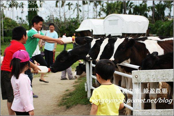 嘉義中埔_綠盈農場20110417_I6860