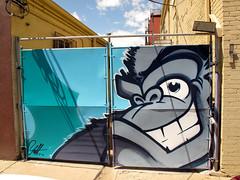 JOLT 001a (Anarchivist Digital Photography) Tags: graffiti murals denver jolt explored guerrillagarden