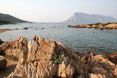 Sardinien5 (martinmueller3) Tags: sardinia sommer urlaub sardinien heis wunderschn azurblau betravelde httpwwwcluburlaubschiffde