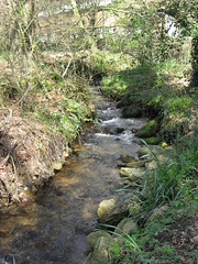 Coombe Mill stream