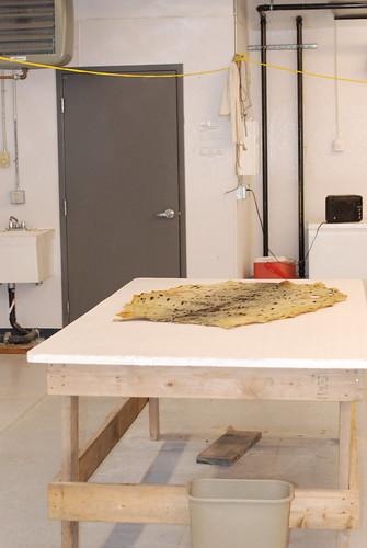 Shishmaref Tannery- Yellow Seal Skin