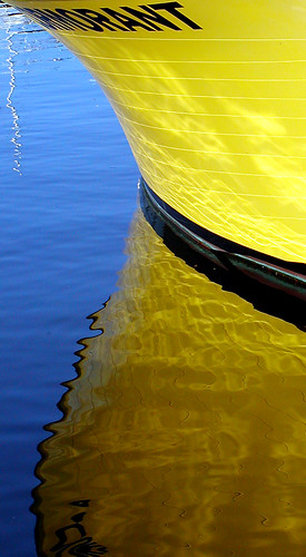 Yellow Reflctions by Damian Gadal