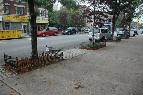 After: Cortelyou Weeded