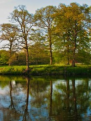 Twicefold Image (billtam) Tags: uk blue trees sky colour green water canon river landscape evening scotland may fields reflexions a620 scottishborders tweedriver aplusphoto guasdivinas