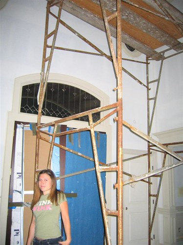 Allycat under the scaffold in the foyer