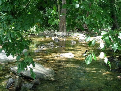 Berryville Stream2
