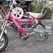 bike scenes from Davis-1.jpg