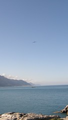 40.石梯枰、太平洋與燕鷗