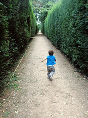 freedom! (the hanner) Tags: london toddler running run littleman maze godson matteo westlondon chiswick tayo w4 chiswickhouse almosttwo twentythreemonths oroneandthreequarters