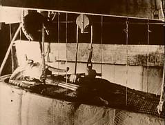 "King TutanKhamun Mummies. (thesmuggler- Night of the Swallow"") Tags: archaeology wrapping linen wrapped were limbs mummy finest bandages tutankhamuns"