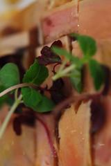 Terrine De Foie Gras - DSC_0309 (~Nisa) Tags: food chicken french restaurant salad corn singapore asia european western liver artichokes hazelnuts foiegras chickenbreast saintpierre grilledcorn duckliver centralmall foiegrasterrine roastedhazelnuts 3magazineroad terrinedefoiegras pressedfoiegrasterrine