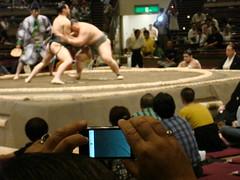 Sumo & iPhone