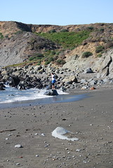 Shell Beach (ledges) Tags: williamscollege californiafieldseminar williamsmysticfall2008