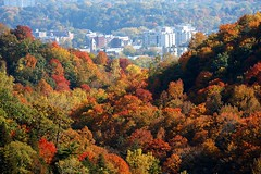 Dundas in autumn's cradle (fredjk) Tags: autumn ontario color tree fall leaves colours gorge spencer dundas
