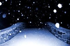 snowy snow in central park nyc folks! (Wolf & Bird) Tags: nyc newyorkcity bridge snow centralpark manhattan romance magical