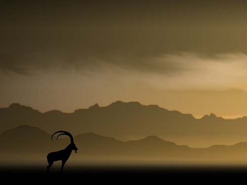 Ubuntu 8.10 Intrepid Ibex Wallpapers - strata_cropped3