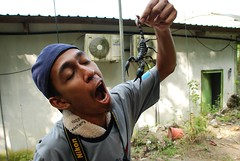 Sir Mart Outdoorgraphy™ @ Butterfly Farm #5