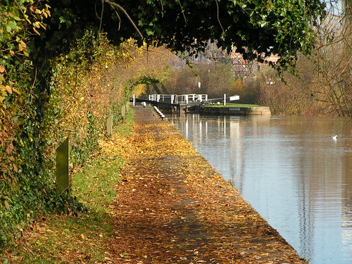 Leicester England 19th November 2008