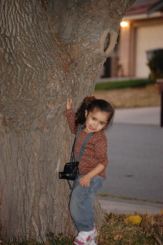 silly with camera and tree