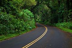 The Road to Nuuanu Pali (JN) Tags: road forest hawaii oahu jungle pali nuuanu nikon50mmf18 nikond700