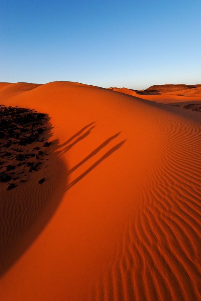 انها الساحرة صحراء الجزائر(صور) 3095597233_2554965fc6_b