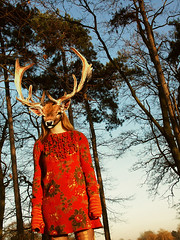 (post)_modern love (ljosberinn) Tags: wood blue autumn trees light sunset red sky orange fashion forest dress mask head cut surreal deer sólrún pretentiousartsystuff