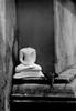 17 (Madhushan Indika De Silva) Tags: srilanka kalaniya