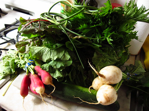 June 15 Vegetable Share