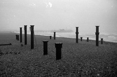 Petrified Forest (-RobW-) Tags: morning sea blackandwhite bw film beach wet sussex pier brighton windy stormy westpier pentaxmesuper derelict brightonpier palacepier agfaapx400 mygoditwaswet