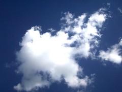 Un Chupacabras (Belle  de  Jour) Tags: cielo nube chupacabras algodn