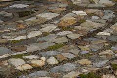 A series of brown and gray paving stones, set in inset arcs, separated by arcs of moss - a section of a labyrinth.