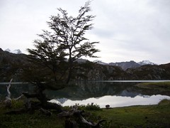 Ushuaia - trek - paso de la oveja - lagune