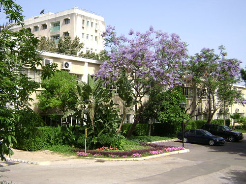 AUB Lower Campus