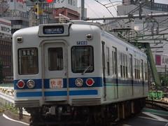 P6040269