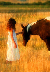 Taya's Wish (Ernie Fischhofer) Tags: horses west girl dreams western prairies equestrian timeless